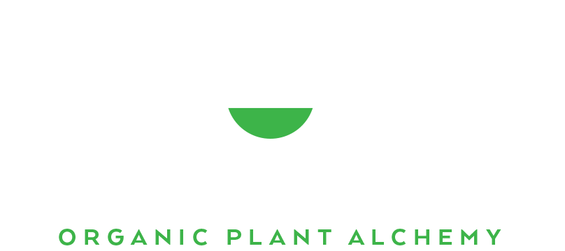 The Hemp Kitchen